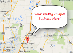 Wesley Chapel SEO Pic of Google Maps - Your Business Here