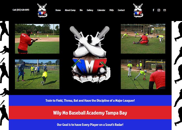 Image of New Website Design Launched for WIly Mo Baseball Academy in Tampa FL